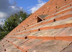 Differentes tuiles pour toiture